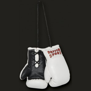 COLOR Mini boxing gloves